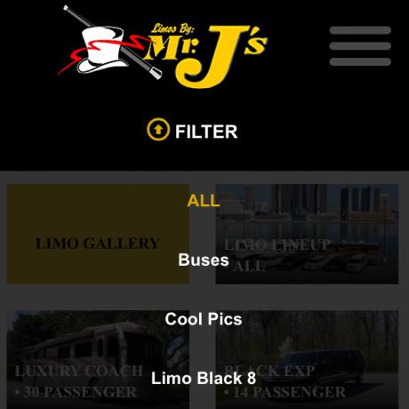 Limos by Mr. J's website and logo design